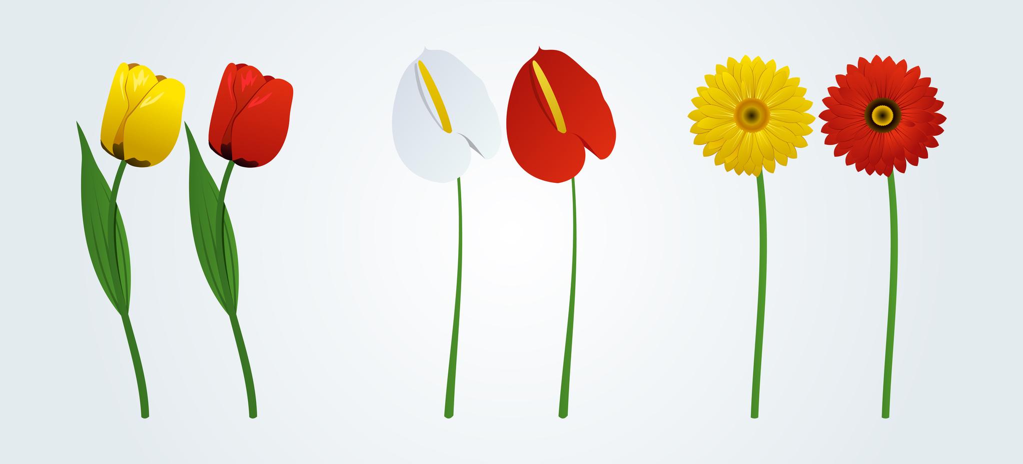 Blumen-48993554